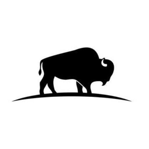 Sandy Valley Bison